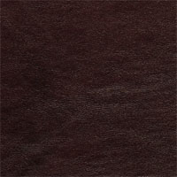 Airs Black Brush - grade A